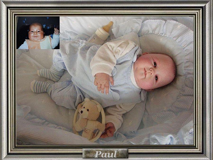 Paul uit de kit Panda van Ping Lau